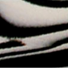 Cinelli Cork Zebra Road Bicycle Handlebar Tape w/Matching End Plugs - B004VAZDKM
